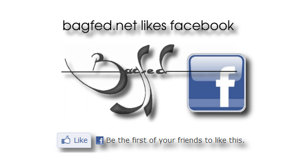 bagfed.net likes facebook